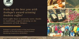 Showcasing local MSMEs: Atokape, the sweetest Arabica Coffee in the Philippines from Benguet